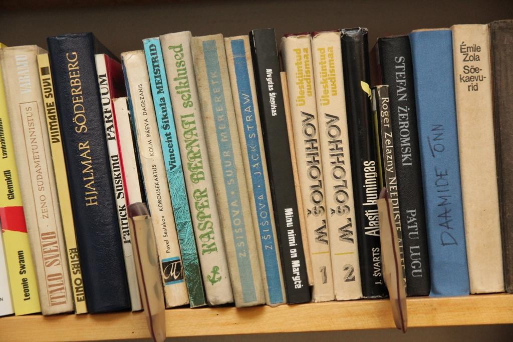 Metsküla raamatukogu (14)
