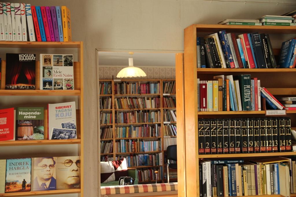 Metsküla raamatukogu (43)