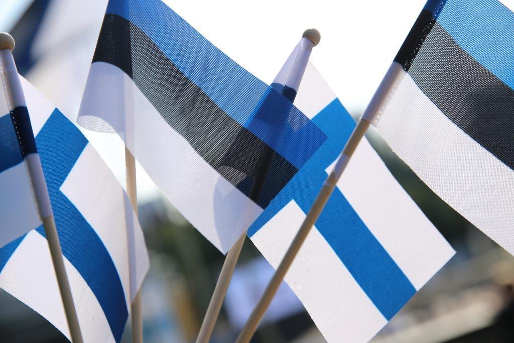 Soome ja Eesti lipud