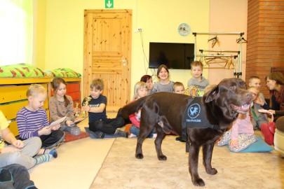 Teraapiakoer Risti lasteaias (Eesti Abi- ja Teraapiakoerte Ühing) (7)