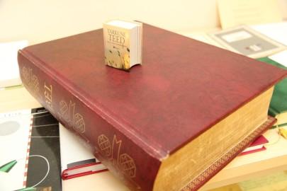Kullamaa raamatukogu (urmas lauri) (32)
