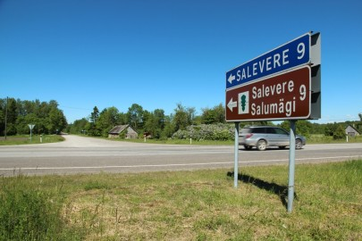 Salevere tee (urmas lauri) (3)