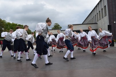 graubergi tantsukad41