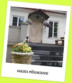 haeska kohvikutepäev (4)