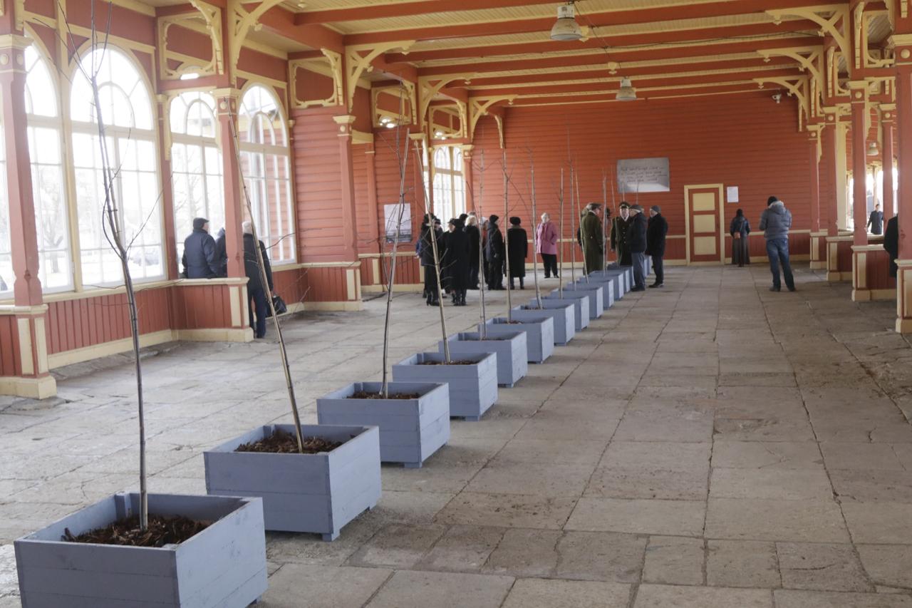 """Galerii: Haapsalus avati märtsiküüditamise meenutuseks installatsioon """"Õitsev monument"""""""