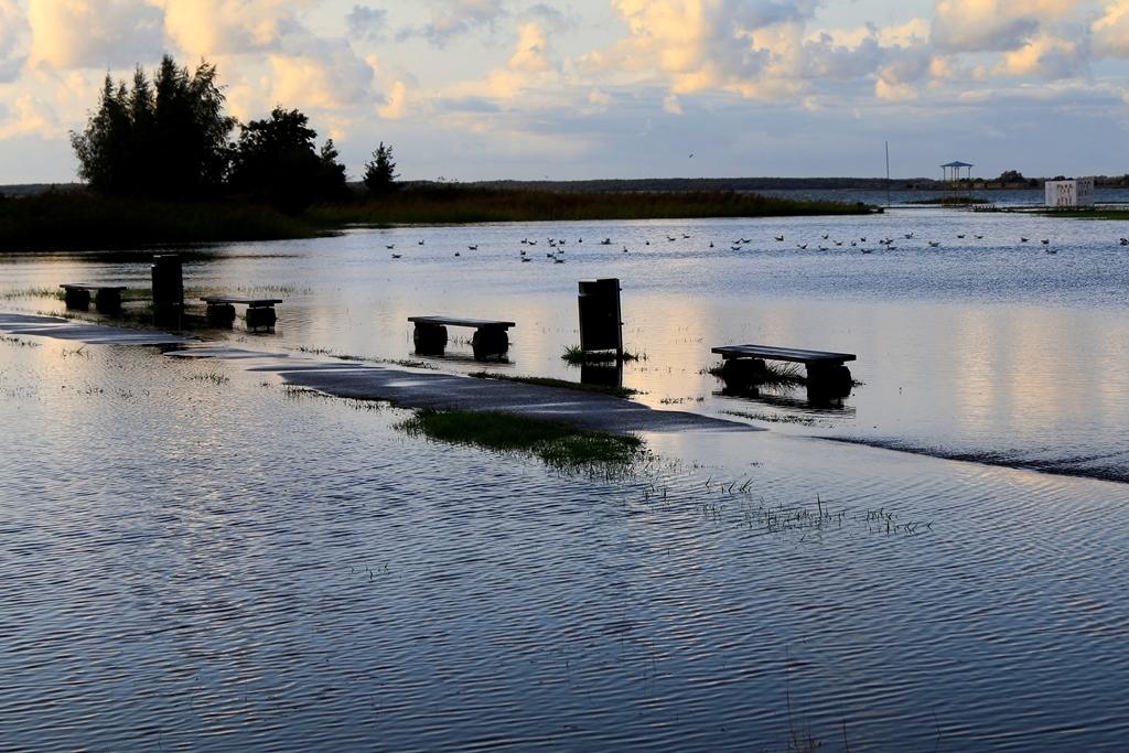 Galerii: suurvesi lõikas tee Paralepa randa